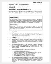 annual audit report