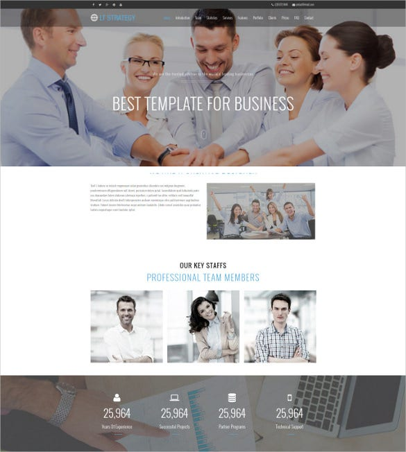 lt strategy onepage wordpress theme