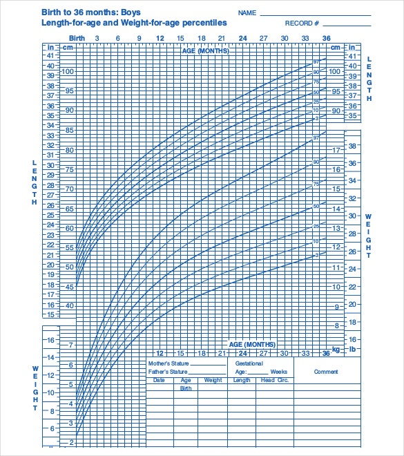 Birth to 36 Months Baby Boys Growth Chart PDF Template Download