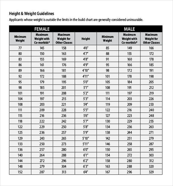 Height Weight Chart Templates   Free Excel Pdf Documents