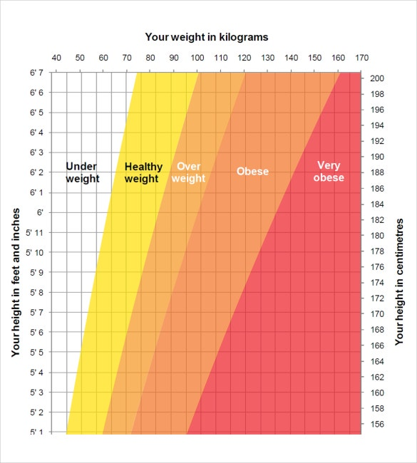 Adult Height Weight Chart Calculatior Downloadin PDF Document Format