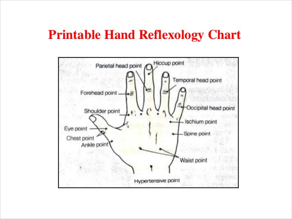 ez 12 parabolic reflector template pdf - template of hand images template design ideas