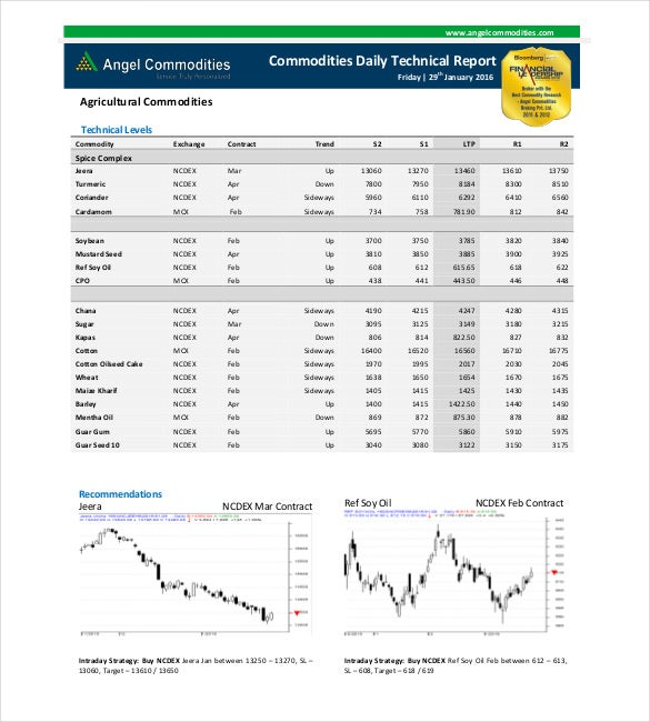 Free Angel Commodity Technical Report