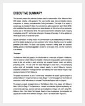 Metro Business Case Example PDF Template Free