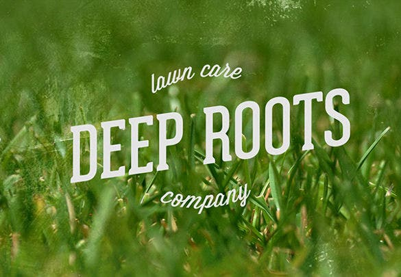 deep roots lawn care flyer template