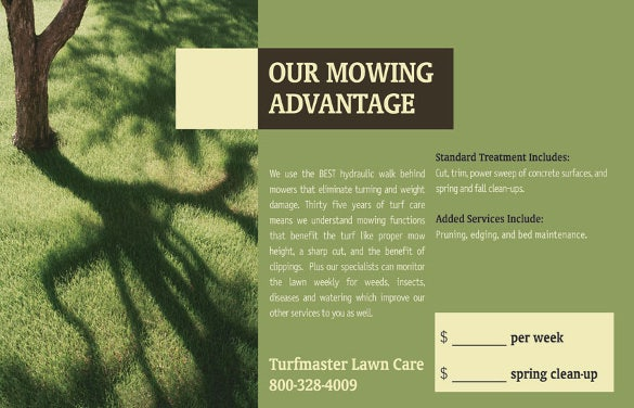 lawn care flyer template with high quality