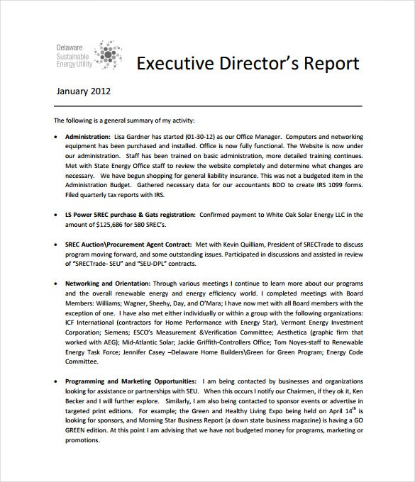 Executive Report Template   Free Sample Example Format