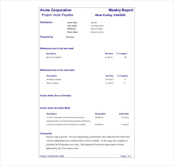 Sample Project Status Reporting Free Download Template