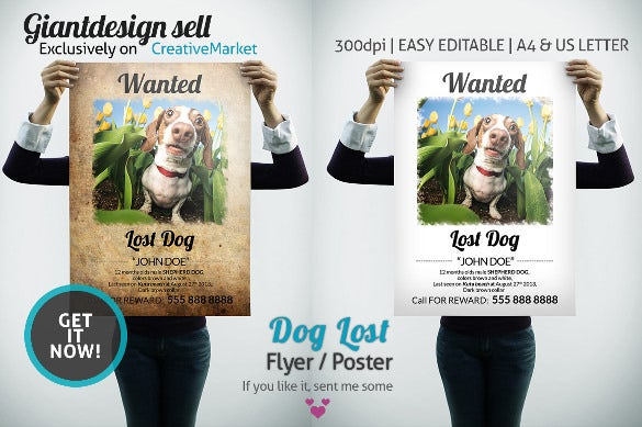 Easy Editable Lost Pet Flyer Template  Lost Dog Flyer Examples
