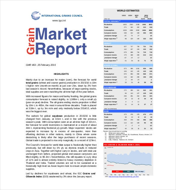 Marketing Report Template   Free Sample Example Format
