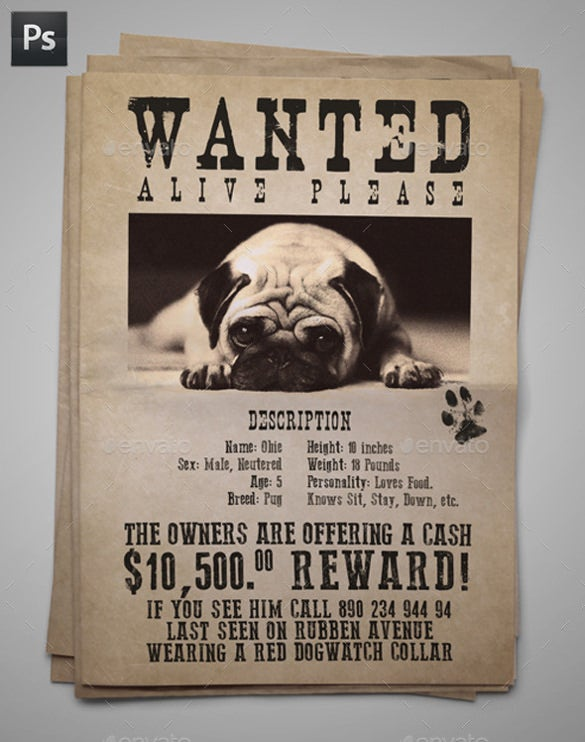 lost pet flyer template with description