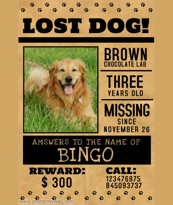Lost Pet Flyers 15 Free Psd Ai Vector Eps Format