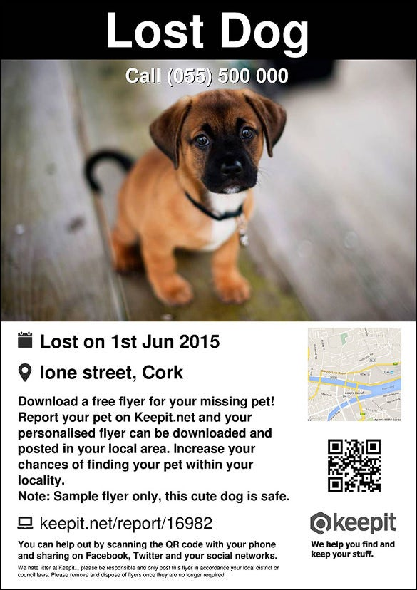 easy to edit lost pet flyer template