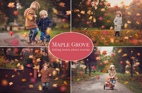 falling leaves overlay fall background template