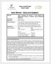 audit summary report