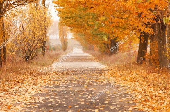 high resolution fall background template