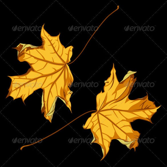 professional fall background template