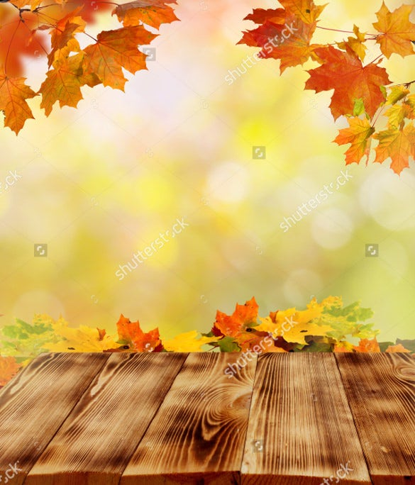 fall backgrounds  u2013 37  free psd  ai  vector eps format