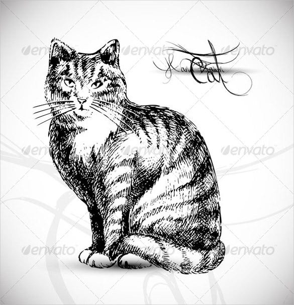 cat drawing vector download