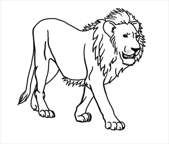 Lion Drawing Template 15 Free Pdf Documents Download Free Premium Templates Lion sketch for kids at paintingvalley.com | explore. lion drawing template 15 free pdf
