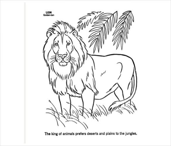 lion template download pdf format