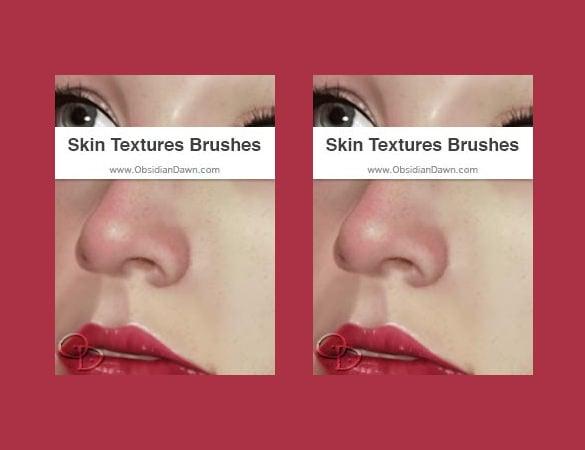 perfect skin brushes