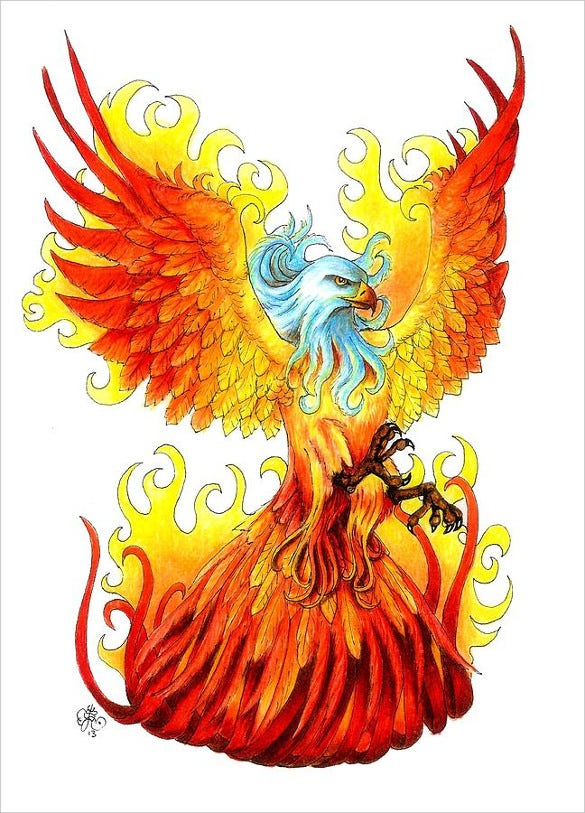 phoenix scarlett royal drawing