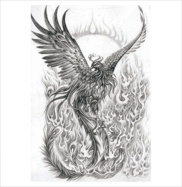 phoenix tattoo drawings by pencil