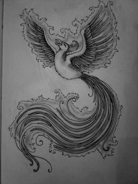 best phoenix drawing download