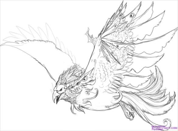 draw a water phoenix bird download