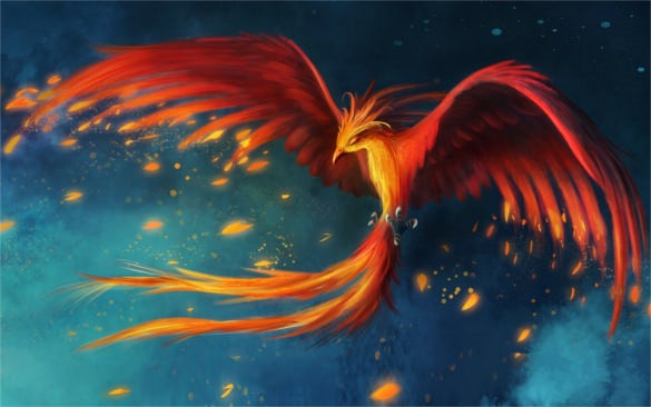 bird phoenix flight art drawing wallpaper