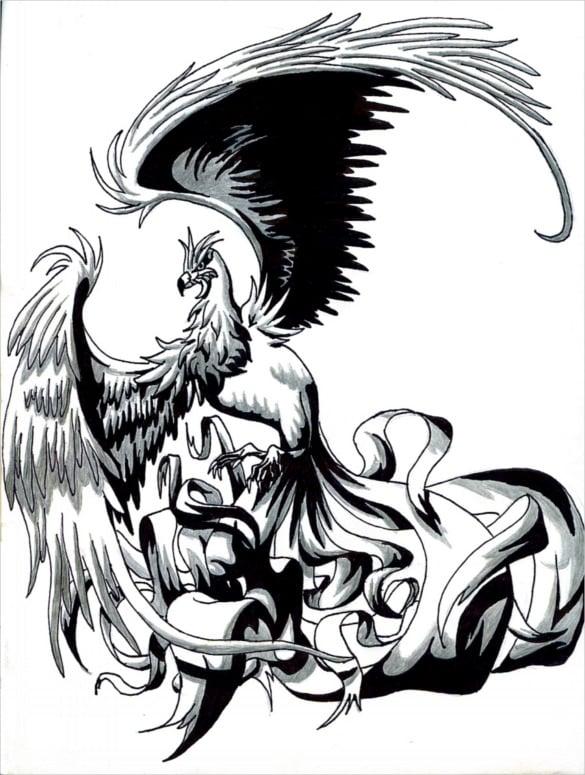 fantastic phoenix bird drawing art download