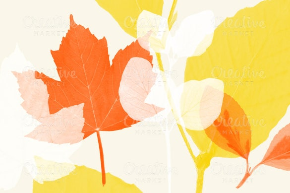 set of 24 pressed leaf brushes for photoshopy