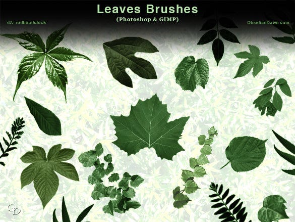 leaf brushes for multipurpos