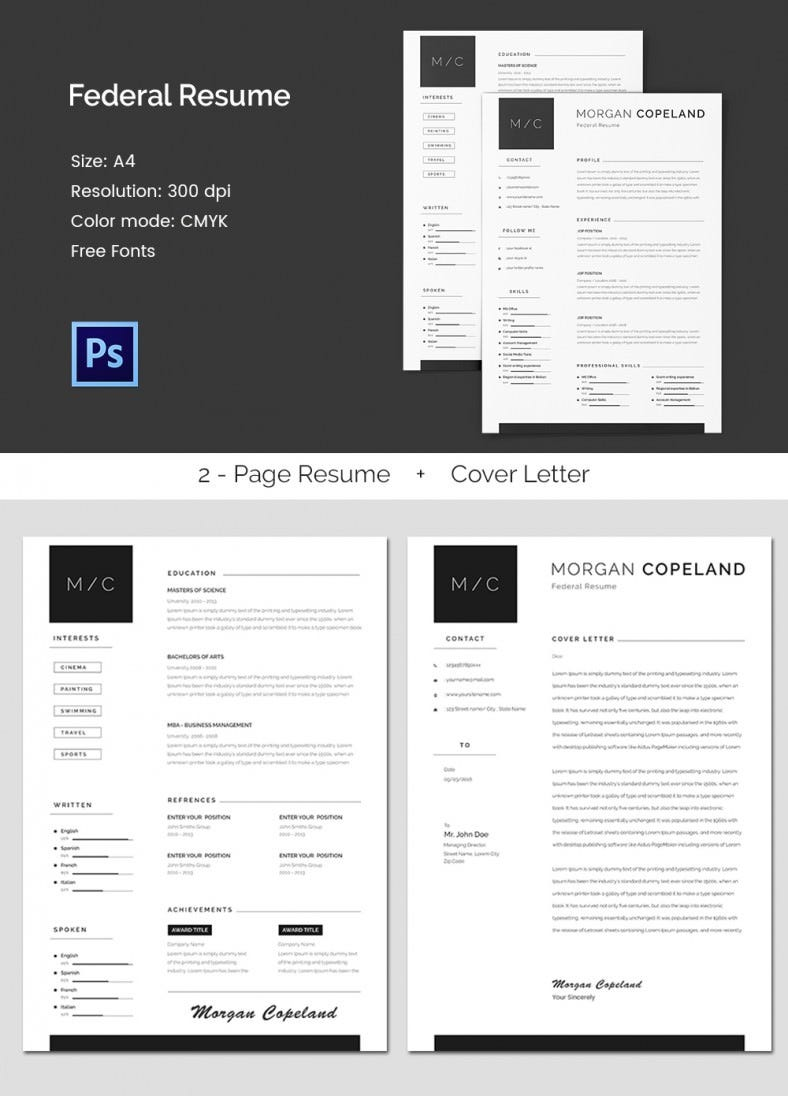 resume word excel pdf psd format creative federal a4 resume template