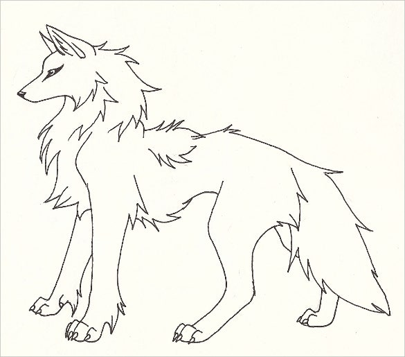 unique wolf drawings