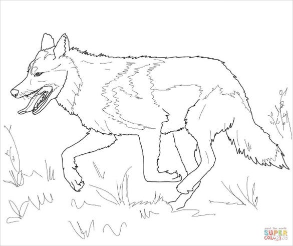 runing wolf drawing to easy paint
