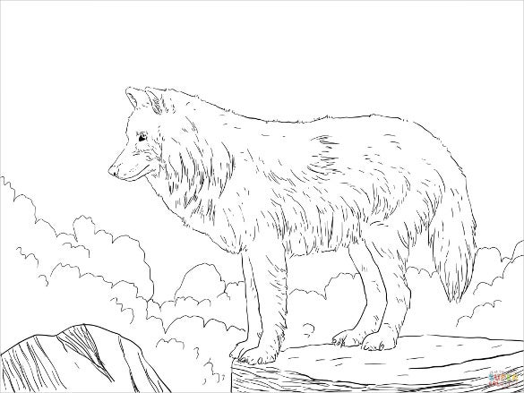 arctic snow wolfs drawing template