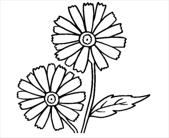 flower coloring pages pdf 21+ Flower Coloring Pages  PSD, AI, Vector EPS | Free & Premium  flower coloring pages pdf