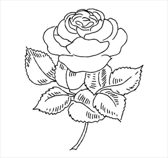 Coloring Pages In Pdf Format | Bgcentrum
