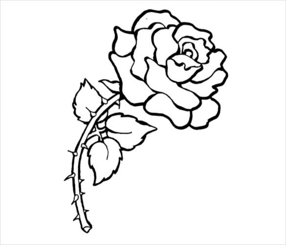 21 Flower Coloring Pages PSD