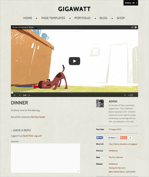 wordpress video website theme