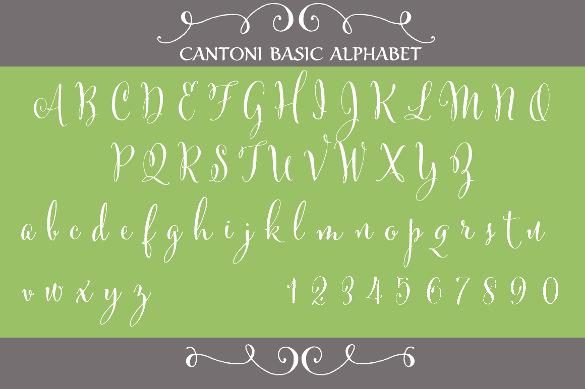 cantoni basic hand lettered font download1