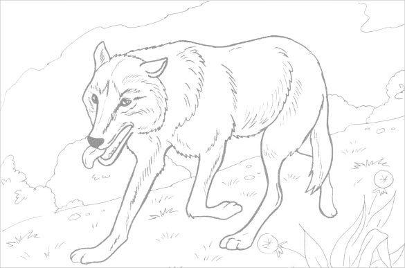 fox coloring page1