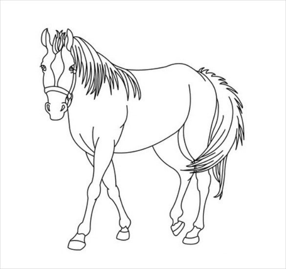 riding horse coloring page pdf free download