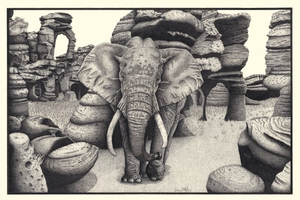 black and white elephant drawing template