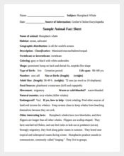 Animal Fact Sheet PDF Template Free
