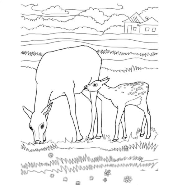 Mother And Baby Elk Coloring Pages PDF Free Download