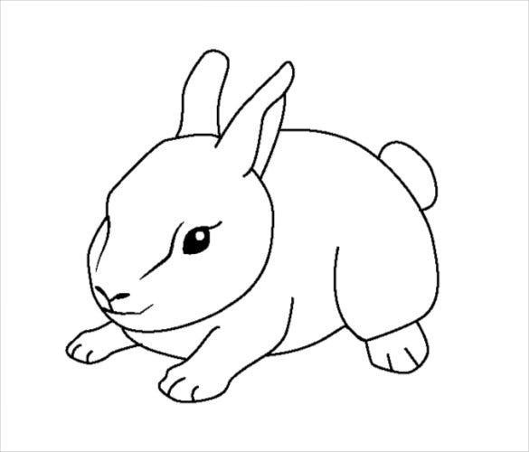baby rabbit coloring page pdf free download