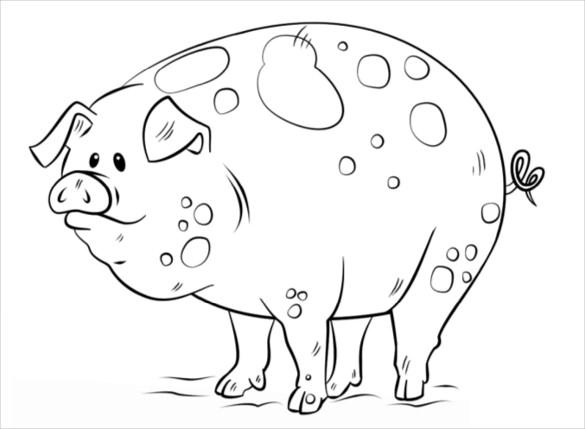 pig coloring page pdf free download